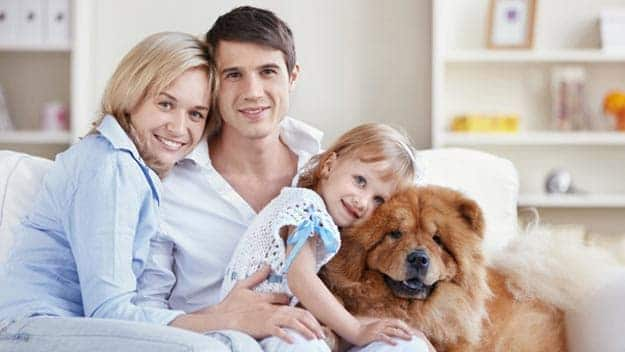 Wills & Trusts dog-young-family Direct Wills Billericay